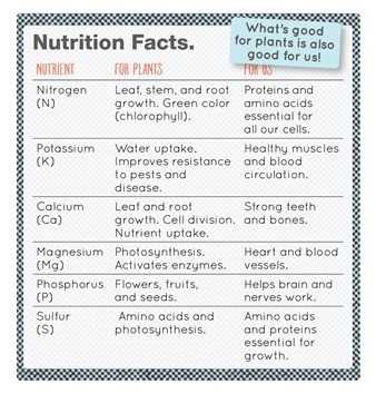 Nutrition Facts small.jpg