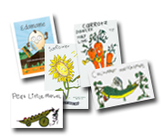 seed packets_web.jpg
